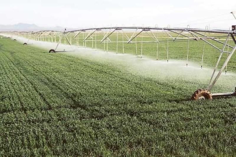 الگوهای برنامه ریزی در کشاورزی