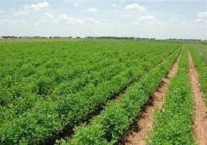 توسعه کشاورزی در جهان