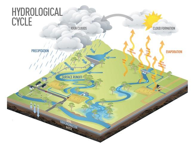 هیدرولوژی